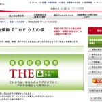 【THEケガの保険】保険料・補償内容・加入申し込み方法について解説